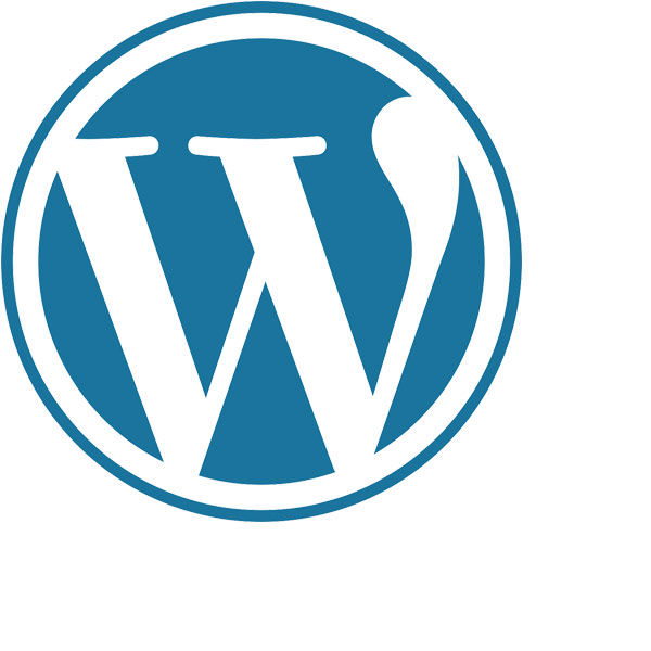 lezioni private di wordpress via skype